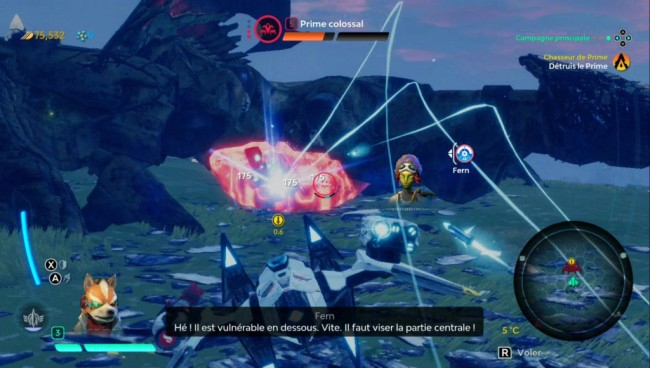 Starlink Pack de Démarrage 5